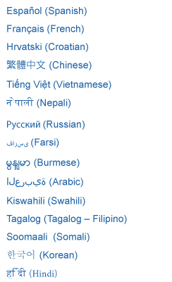 Language List of Interpreters